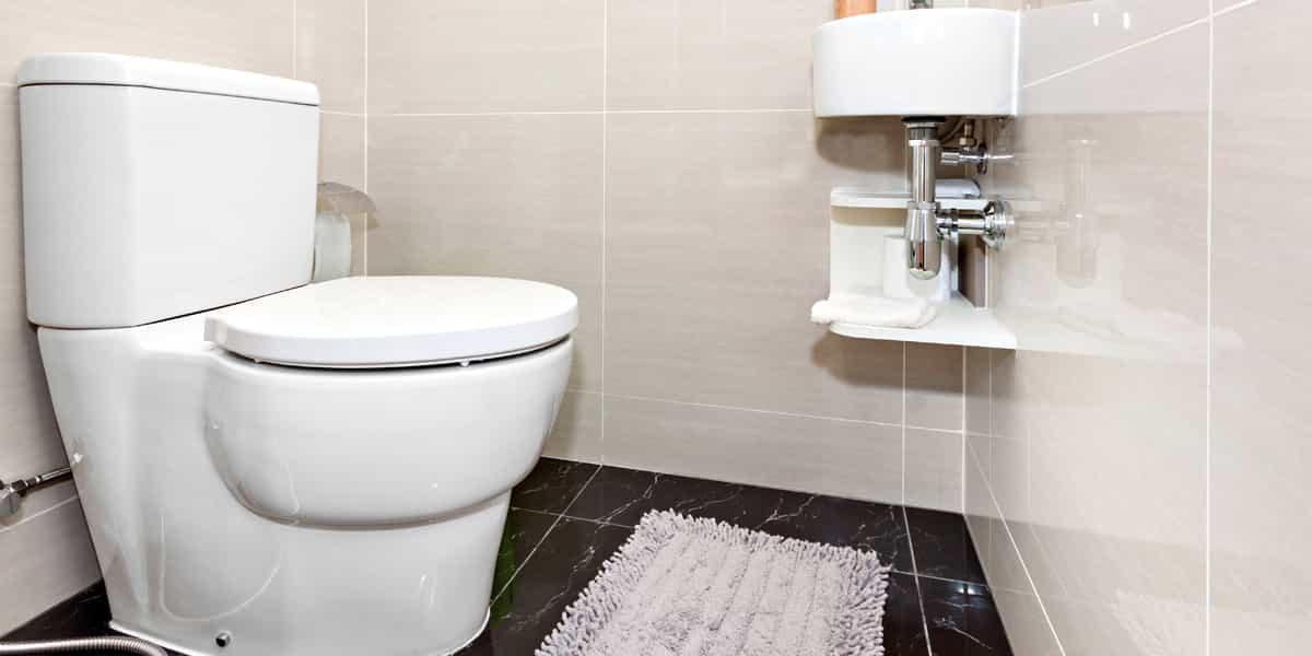 WC Sanibroyeur Essonne 91 : propriétés