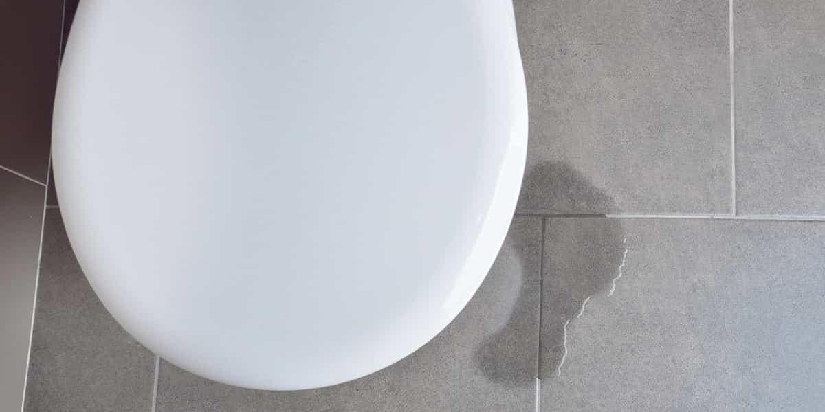 Tarif réparation de fuite WC Essonne 91 et tarif réparation fuite sanibroyeur Essonne 91